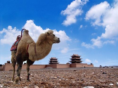 Urumqi to Beijing Silk Road Adventure by Shangri-la Express