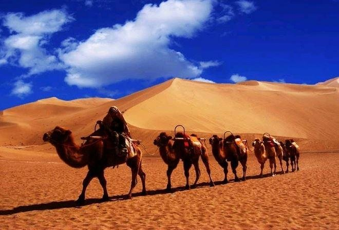 12-Day Silk Road Adventure by Luxury Shangri-La Express A