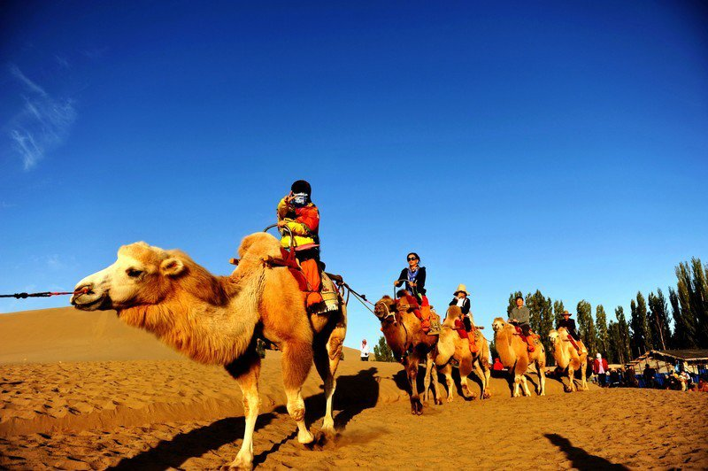 Ultimate Cultural Experience by Unique Silk Road Train