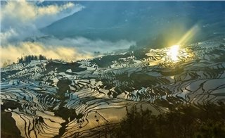 Terrace Fields in Yuanyang