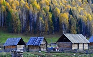 Golden Autumn Xinjiang Tour