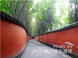 Chengdu Family Holiday