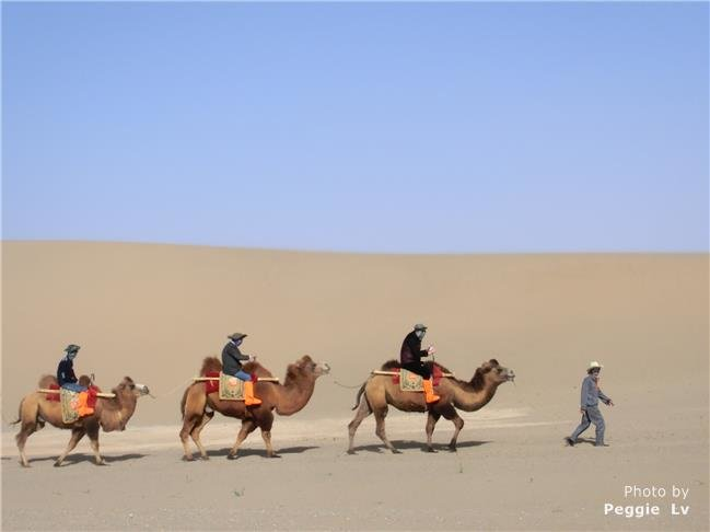 Splendid Silk Road Trip