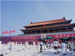 Great Value Beijing - Shanghai Tour