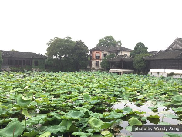 1-Day Nanxun Ancient Town Tour from Hangzhou