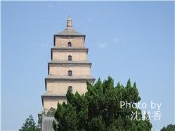 Xi'an, Yangtze & Shanghai Group Tour