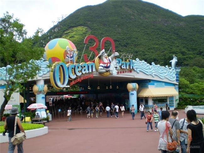 One Day Hong Kong Island and Ocean Park Tour