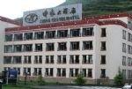 The Zhonglv Hotel
